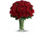 Red roses with a vase
