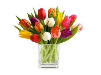 Vegyes tulipán csokor     - 15 szál