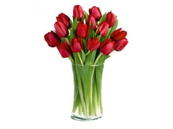 Piros tulipán csokor         - 15 szál