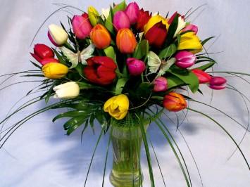 Vegyes tulipán csokor - 25 szál